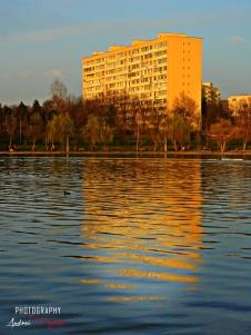 photo_app-6